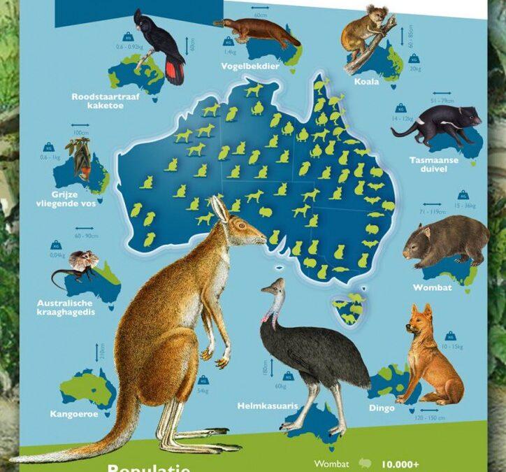 Top tien meest bijzondere dieren van Australië